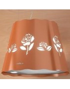Rose cooker hoods Filters, Lamps and accessories